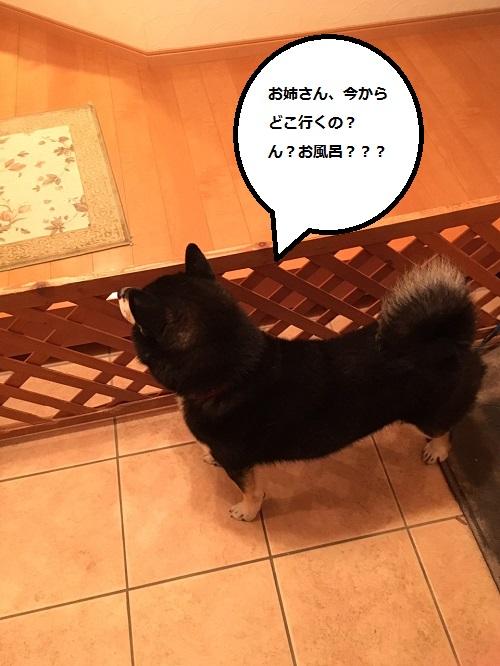まるちゃん2016012401
