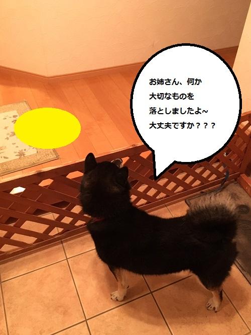 まるちゃん2016012402
