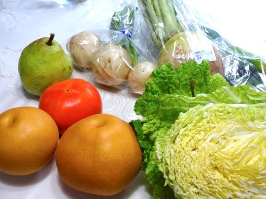 大地の野菜アップ