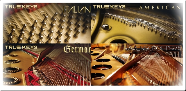 VILabs Keys-2