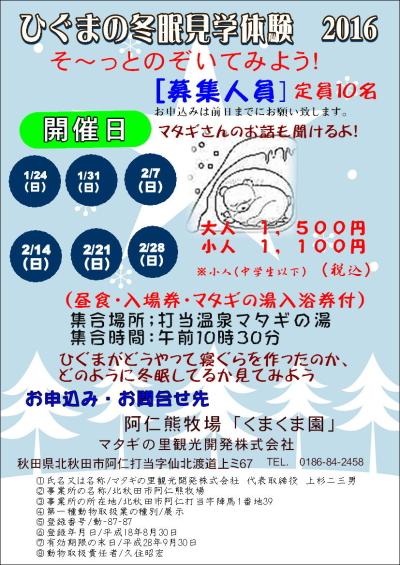 ひぐまの冬眠見学体験2016