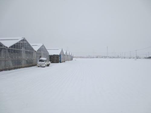 20160118 大雪2