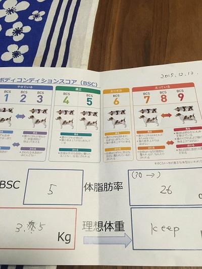 20151212-8.jpg