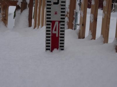 お庭ドッグランの積雪量は