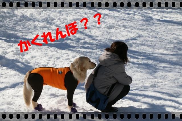 IMG_5726-6.jpg