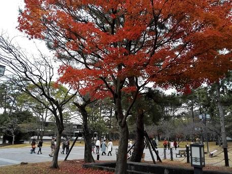 8 奈良県文化会館・前の庭