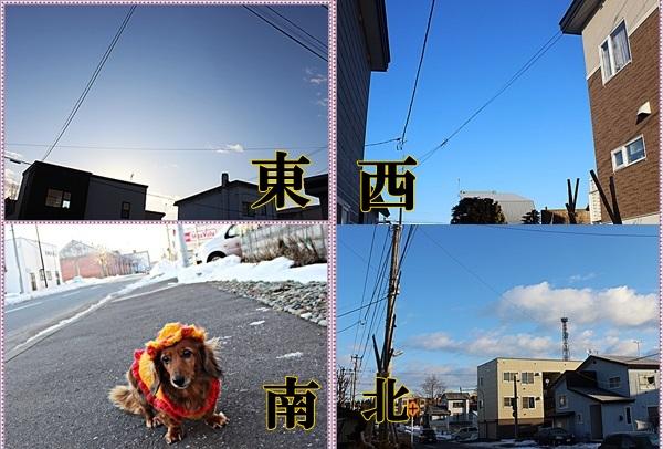 IMG_0486-tile.jpg