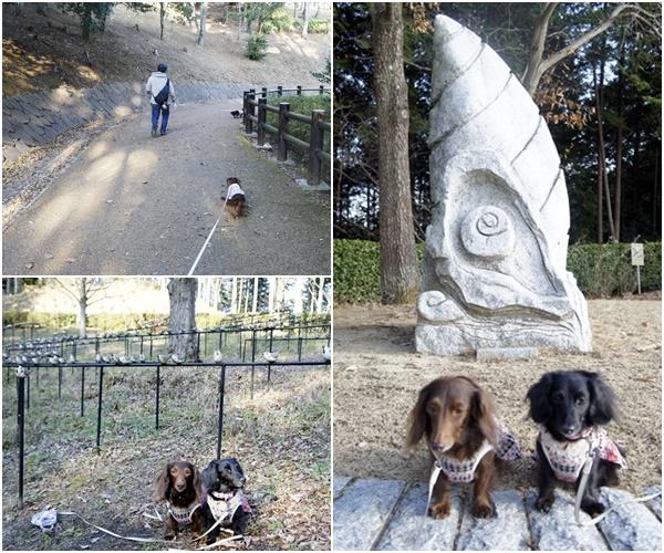 20151212笠間公園1