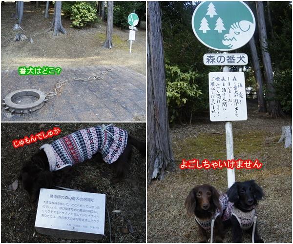 20151212笠間公園2-2