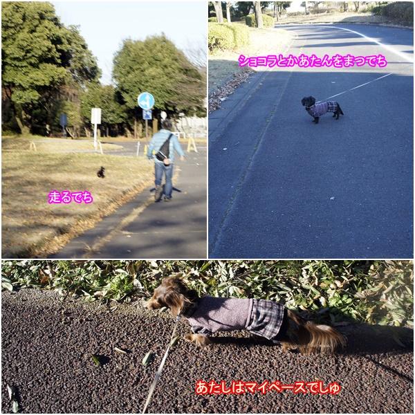 2051219川越公園3