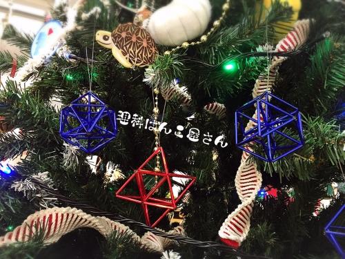 博物クリスマス