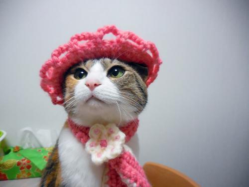 みくピンク毛糸
