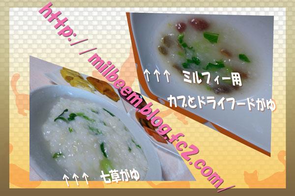 TainoOyatudeco006.jpg