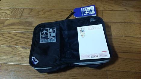 ANAオリジナル ダブルポケットオーガナイザー4L×2 ブラック です。