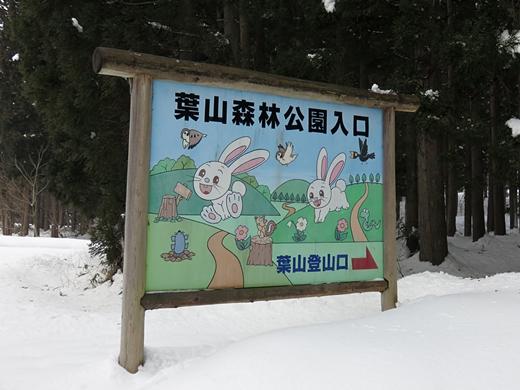 20160213-04.jpg