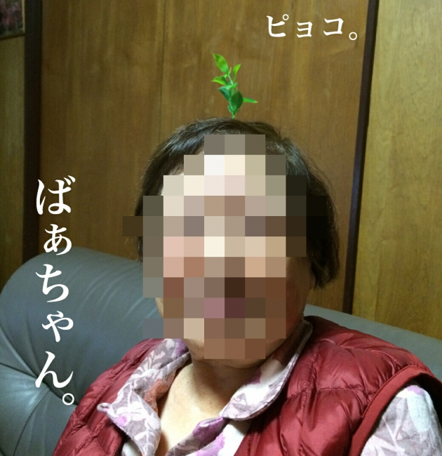 053 中国 草 髪飾り 自作.JPG