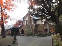 20151210山本有三記念館黄葉1