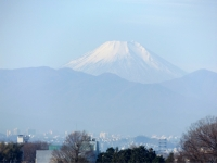 20160103朝の富士山3