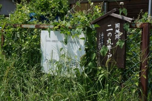 6井戸 (1200x800)