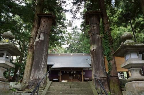 3神木 (1200x800)
