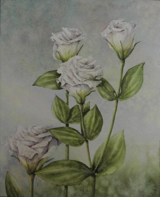 白いトルコキキョウ 1601