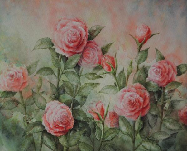 赤いバラ 1601-2