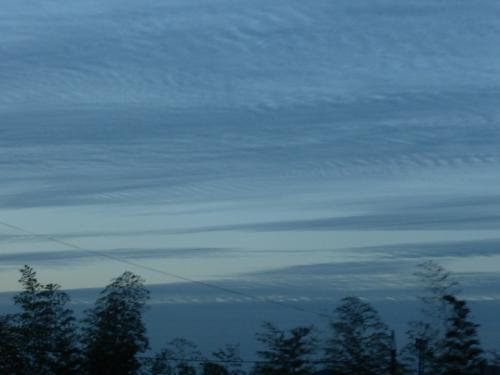 サルと雲 3