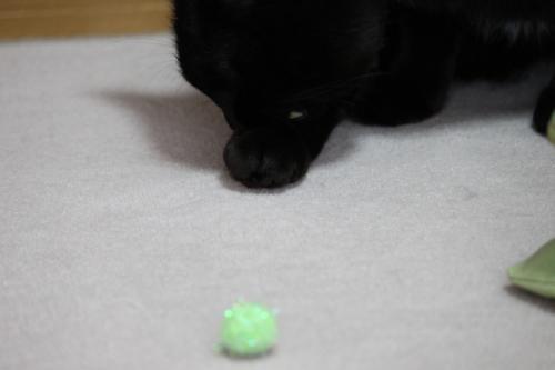 ボール遊び 5
