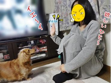 kinako3856.jpg