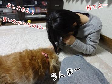kinako3859.jpg