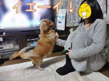 kinako3862.jpg