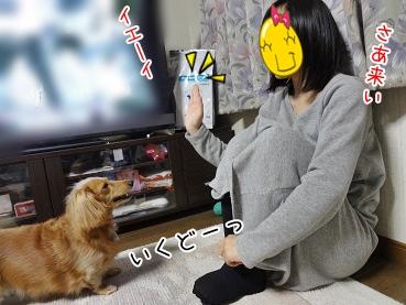 kinako3863.jpg