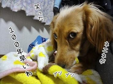 kinako3867.jpg