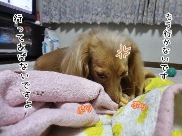 kinako3874.jpg