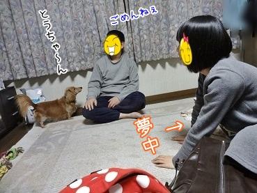 kinako3887.jpg