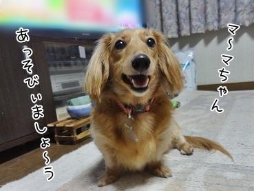 kinako3890.jpg
