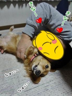 kinako3892.jpg