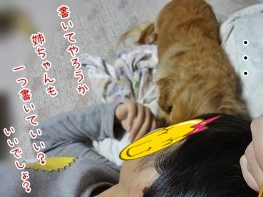 kinako3927.jpg