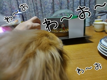kinako3936.jpg