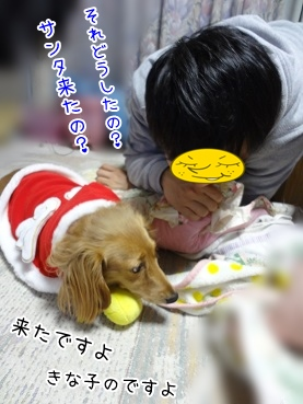 kinako3943.jpg