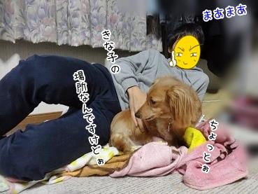 kinako3962.jpg