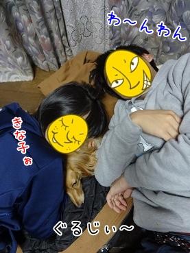 kinako3968.jpg