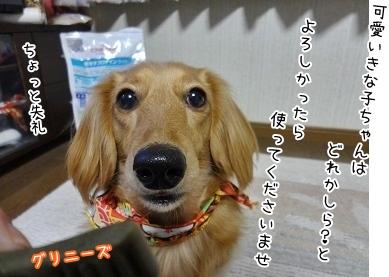 kinako3970.jpg