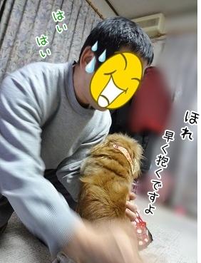 kinako3973.jpg