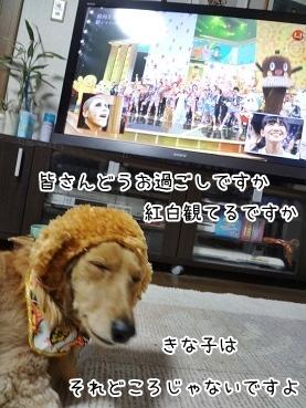 kinako3975.jpg