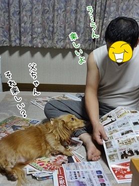 kinako3981.jpg