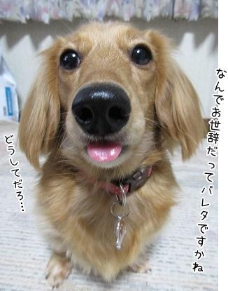 kinako3990.jpg