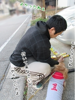kinako3995.jpg