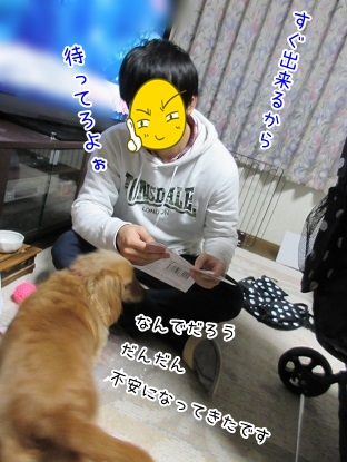 kinako4085.jpg