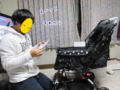 kinako4087.jpg